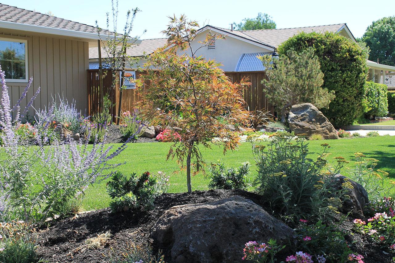 westside-landscaping-photo-gallery-501